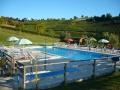 piscina-e-vigneti