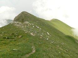 sentiero_verso_monte_zampa